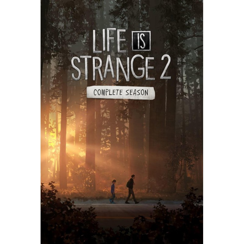 سی دی کی اشتراکی Life is Strange 2